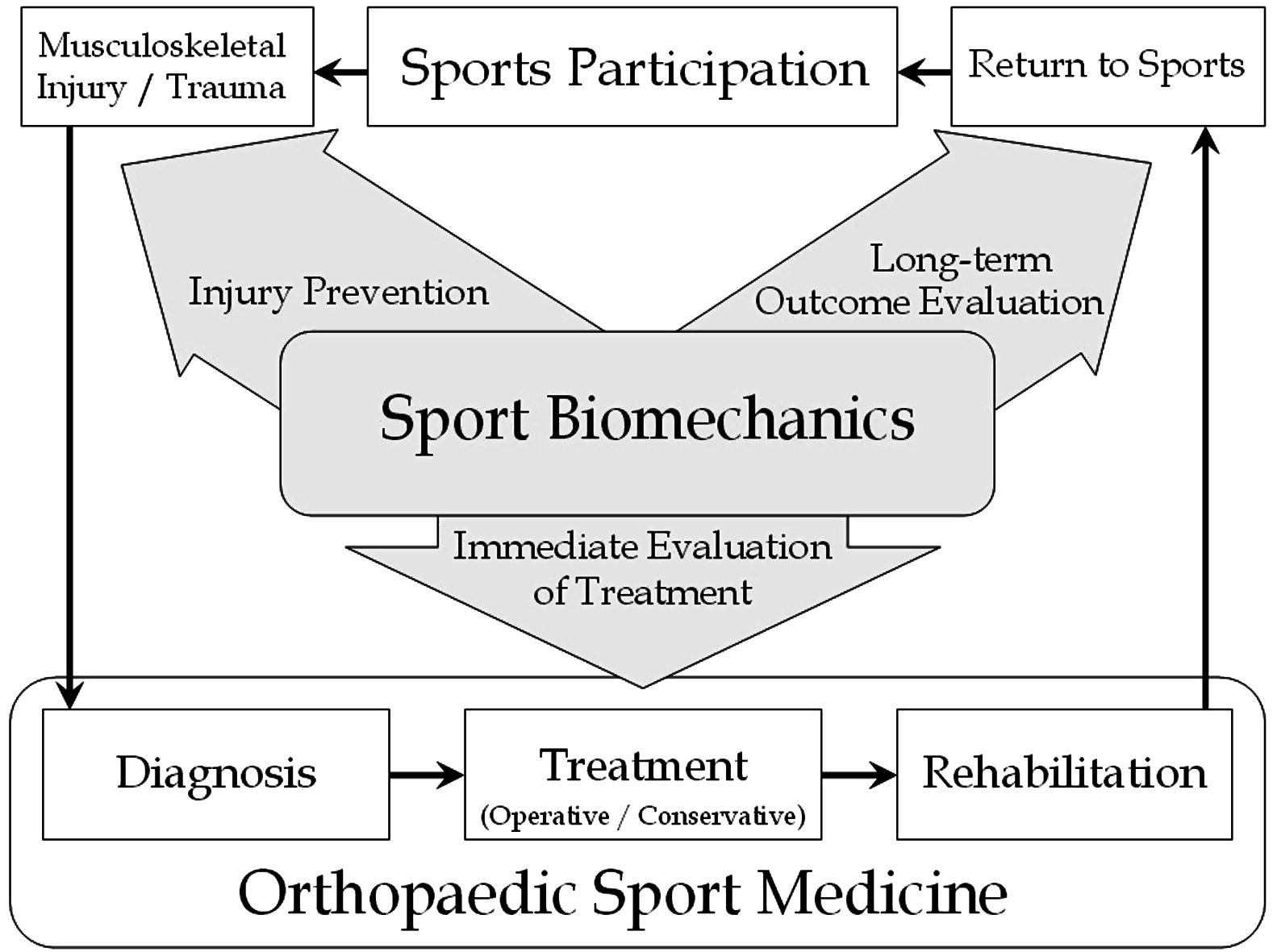 orthopedic sport biochnics a new paradigm Founder/president all paradigm of new mexico jesse enjoys the orthopedic setting due to the in the orthopedic and sports setting where he.